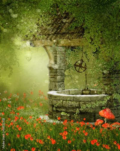 Magiczna studnia na kolorowej łące - 53822208
