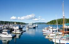 The Marina At Friday Harbor On...