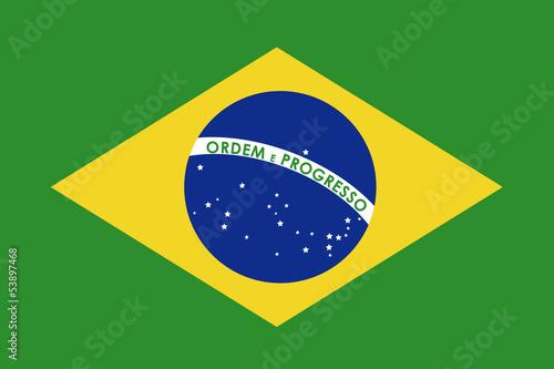 Fotografie, Obraz  brazil flag