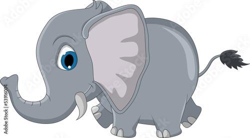 slodki-slon-kreskowka
