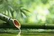 canvas print picture Natural  bamboo fountain