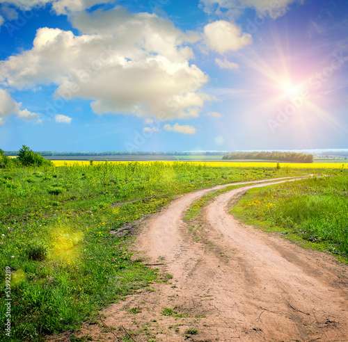 Fototapety, obrazy: ground road in the summer field