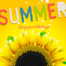 Summer Background With Sunflow...