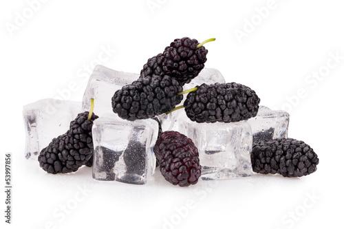Poster Dans la glace mulberry