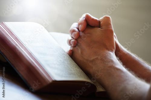 Carta da parati Praying hands on a Holy Bible