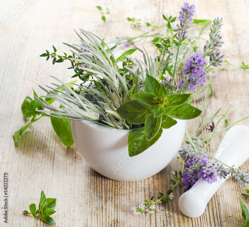 Photo  Fresh herbs