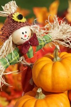 Cute Scarecrow And Pumpkins On Autumn Leaves Background.
