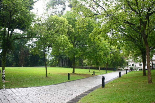 Photo  Tropic Green, Fort Canning Park Singapore, Asia Rain forest