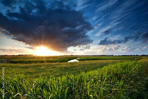 Poster Texas sunset over green summer meadow