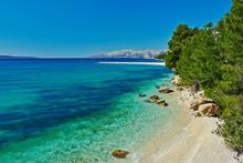 Beautiful Adriatic Sea Bay With Pines In Croatia
