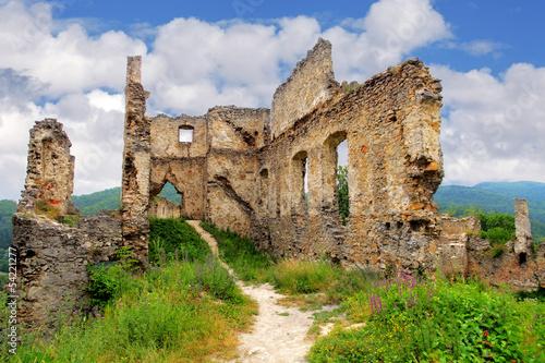 Foto op Aluminium Rudnes Ruin of castle - Povazsky hrad, Slovakia