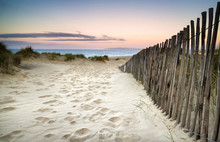 Grassy Sand Dunes Landscape At...
