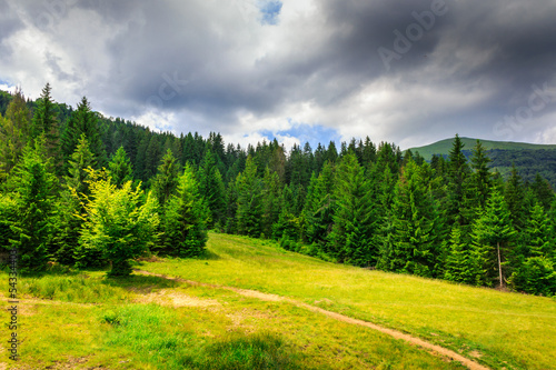 Aluminium Prints Dark grey clearing with footpath in a mountain forest before the storm.