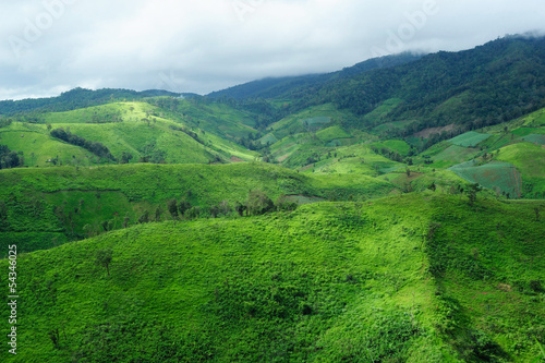 Spoed Foto op Canvas Groene Landscape of the rice and corn plantations in Thailand