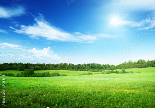 Foto op Aluminium Weide, Moeras field of grass and perfect sky