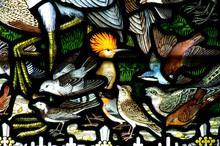 Birds In Stained Glass