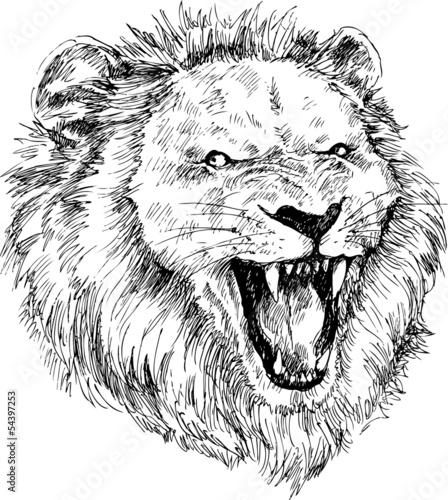 Deurstickers Hand getrokken schets van dieren hand drawn lion head