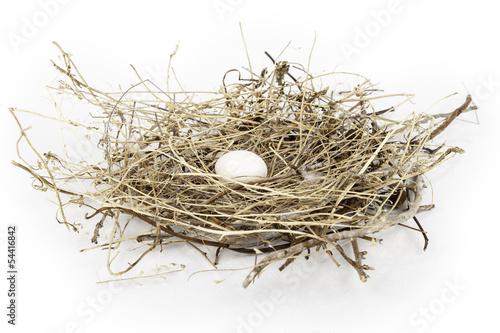 huevo en su nido Canvas Print