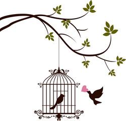 Naklejka Do sypialni bird are bringing love to the bird in the cage