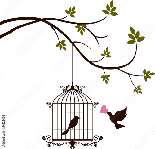 Recess Fitting Birds in cages bird are bringing love to the bird in the cage