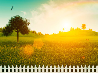 White fence on the meadow. Summer landscape