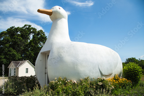 Historic Big Duck Long Island, New York