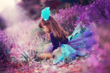 On The Fragrant Lavender Walks Beautiful Girl In A Smart Dress