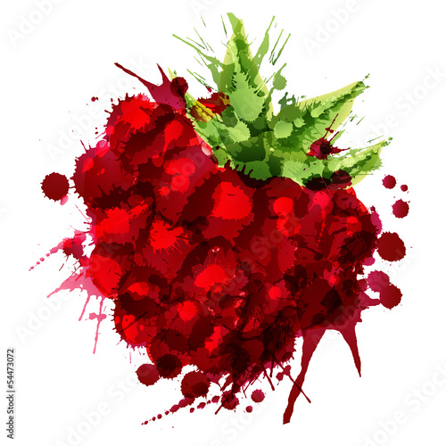 Raspberry made of colorful splashes on white background