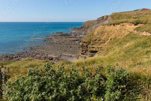 Widemouth Bay Water Cove near Bude Cornwall England Canvas Print