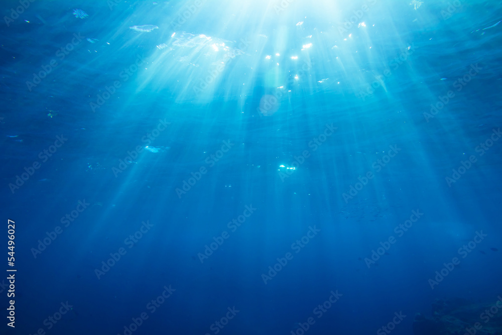 Fototapeta Underwater shot with sunrays and fishes in deep tropical sea