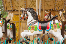 Colorful Carousel Horses