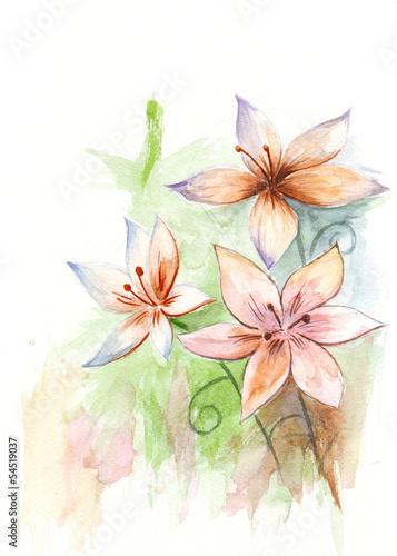 Staande foto Hoogte schaal Asiatic lilies