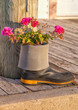 Rubber Boot Garden