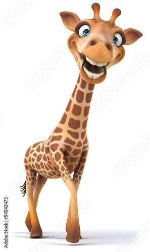 Fun giraffe Canvas Print