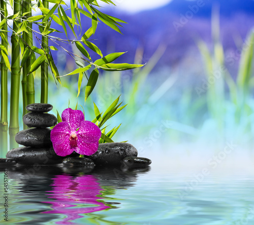 Foto-Stoff - Purple Orchid, Stones and Bamboo on the water