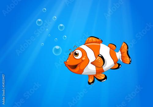 Obraz na plátně A sea with a nemo fish