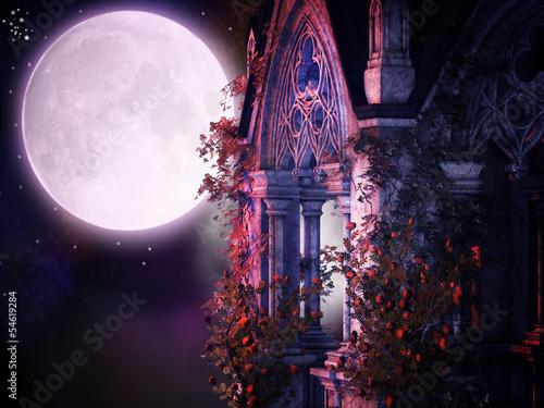 Fotografie, Obraz  magical gothic night