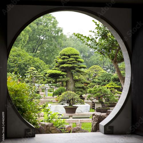 ogrod-bonsai-w-suzhou-chiny