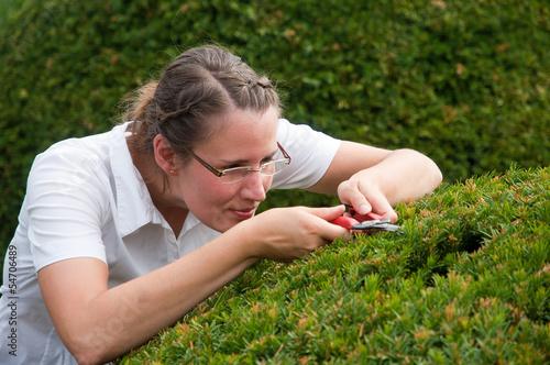 Valokuva Junge Frau in Business Kleidung beschneidet Buchsbaum
