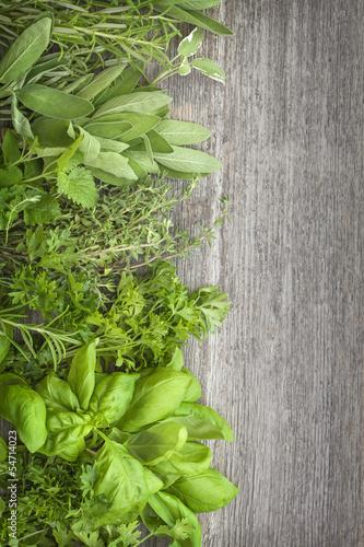 swieze-zielone-ziola