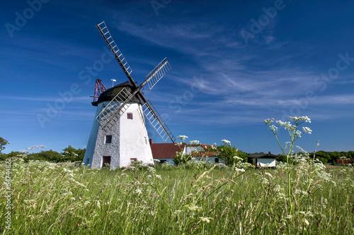 Windmühle Myreagre Molle auf Bornholm #54744822