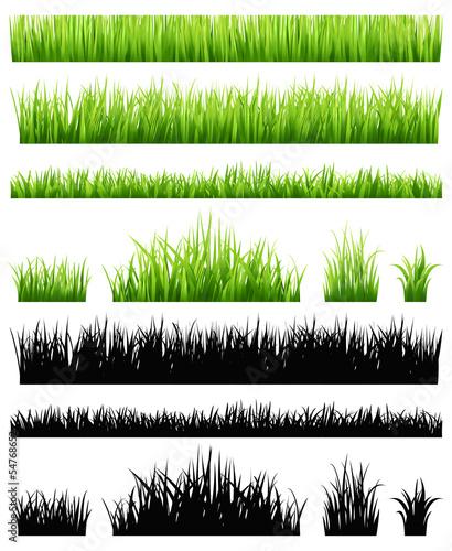Fotografía  Green grass collection