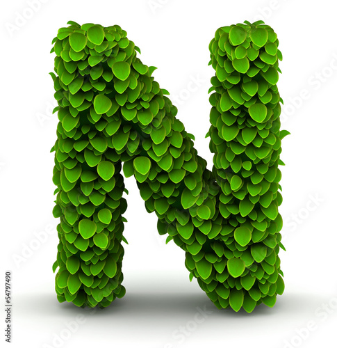 Photo  Leaves font letter N