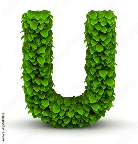 Valokuva  Leaves font letter U