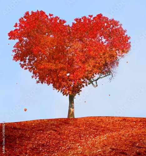 Fototapety, obrazy: Tree of love