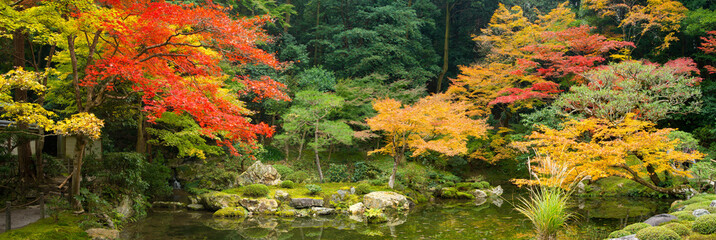 Panel SzklanyJapanischer Garten im Herbst