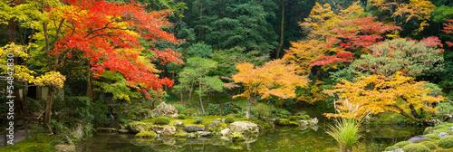 Japanischer Garten im Herbst - 54842830