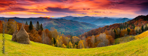 Foto op Plexiglas Crimson autumn