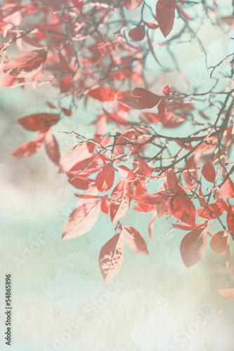 pieknego-grunge-jesienny-tlo
