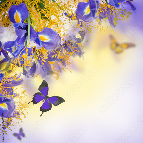 Photo Stands Floral woman Bouquet of blue irises, white flowers and butterfly